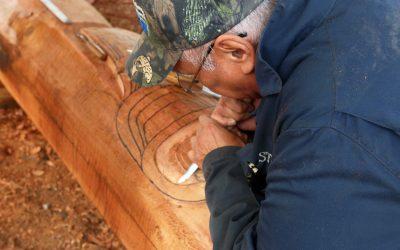 Carving a Niche {AUDIO}